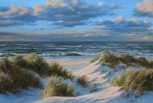 Meiwald Strand