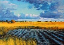 Herbst Moorlandschaft