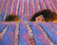 Herbst Lavendelfeld