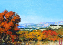 Herbst Provence