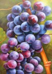 Grapes by Heinz Schölnhammer
